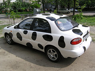 Lanos as a cow, but somebody see the Dalmatian dog :)