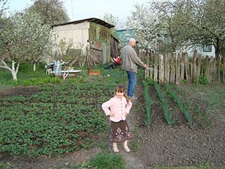 Поливаем зеленый лук на огороде в селе Пуховка