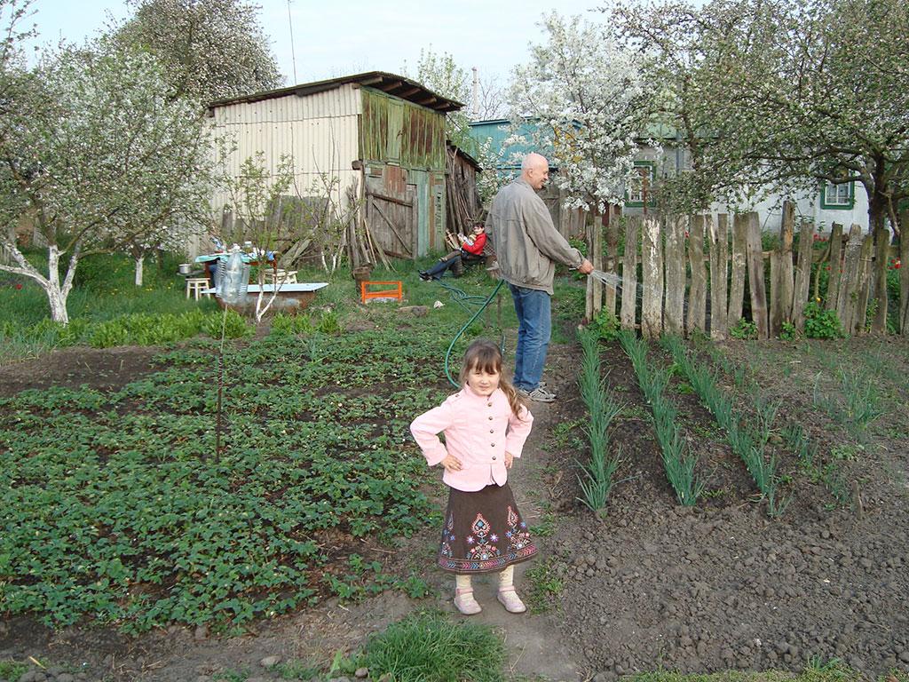 Полив огорода своими руками полив