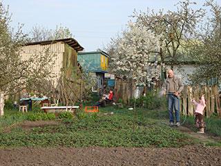 Поливаем огород в селе Пуховка